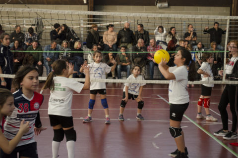 POMEDIVOLLEY_0003_80